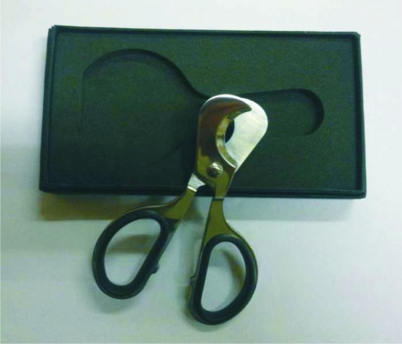 cut-CS39-scissors